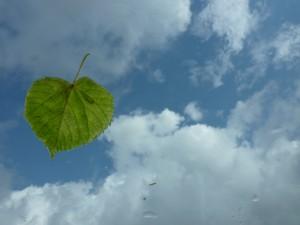 Andrea Kilz sofort umsetzbare Tipps für mehr Energie