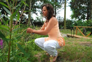 Andrea Kilz Natur TEDDY-Konzept